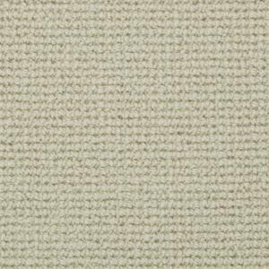 Morella Brushed Cotton WA151