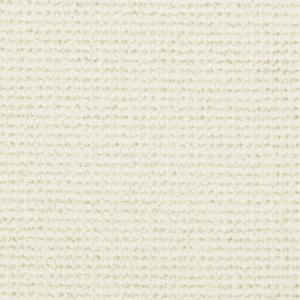 Morella Moon Shimmer WA150